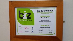 Biz Award 2008
